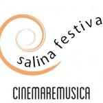 SALINA-FESTIVAL-2012_logo