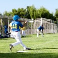 cus_baseball