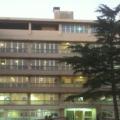 ospedalefogliani