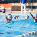 aiello_waterpolo