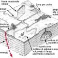 Effetti Terremoto